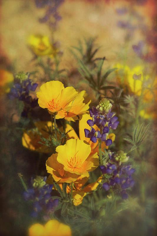 Spring Art Print featuring the photograph A Bouquet Of Spring by Saija Lehtonen