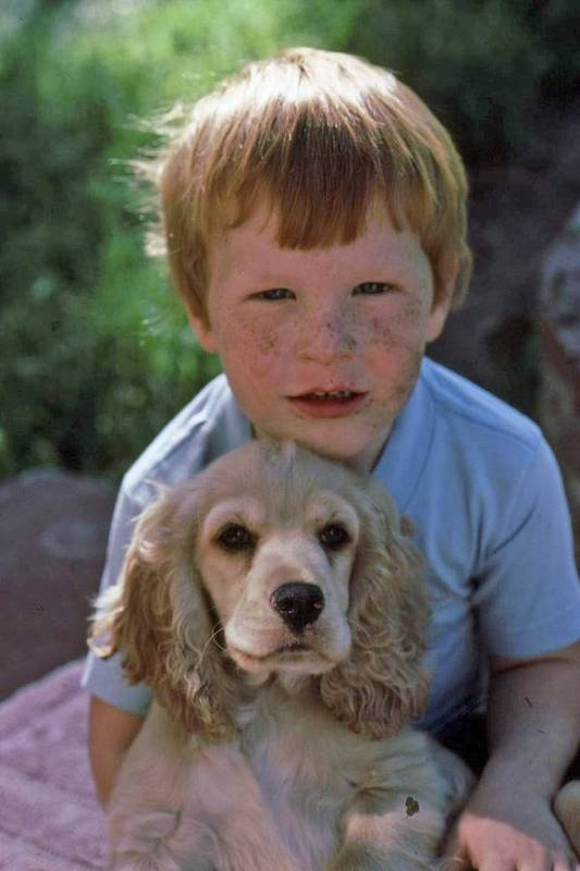 Boy Art Print featuring the photograph A Boy And His Dog With Evidence Of Stolen Brownie by Randy Sprout