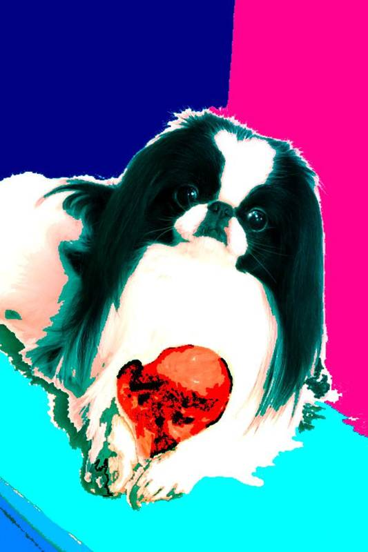 A Japanese Chin And His Toy Art Print featuring the digital art A Japanese Chin And His Toy by Kathleen Sepulveda