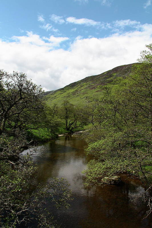 Landscape Art Print featuring the photograph A Scottish Stream by Martina Fagan