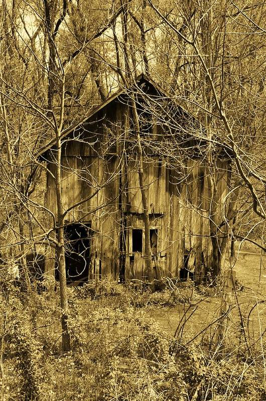 Barn Art Print featuring the digital art Abandoned Barn In Woods by Robert Habermehl