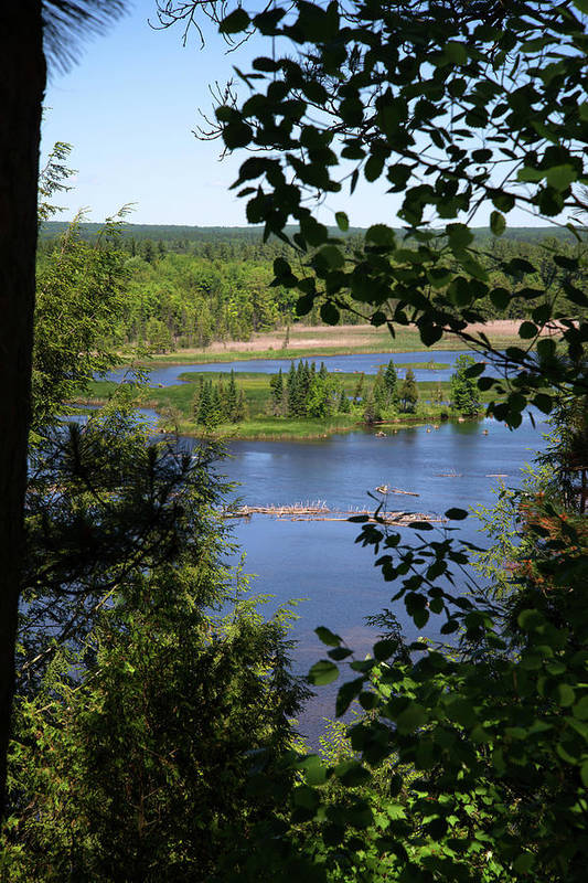 Au Sable River Art Print featuring the photograph Above The Trees by Linda Kerkau