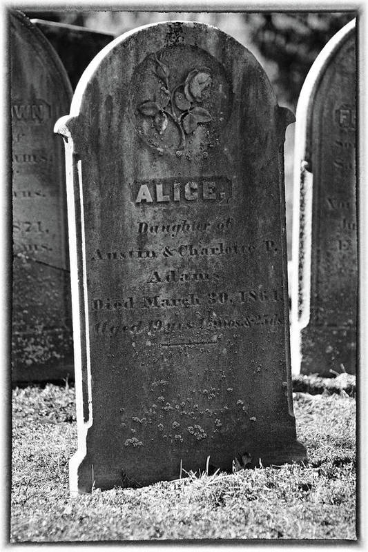 Religion Art Print featuring the photograph Alice Adams by Mike Martin