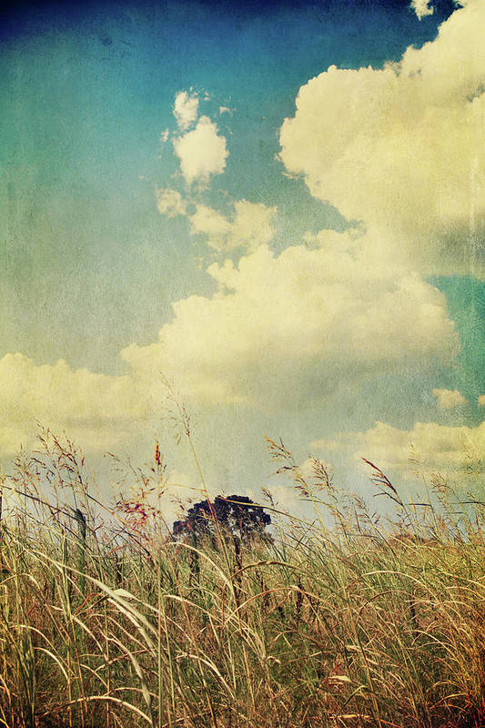 Clouds Print featuring the photograph And The Livin's Easy by Laurie Search