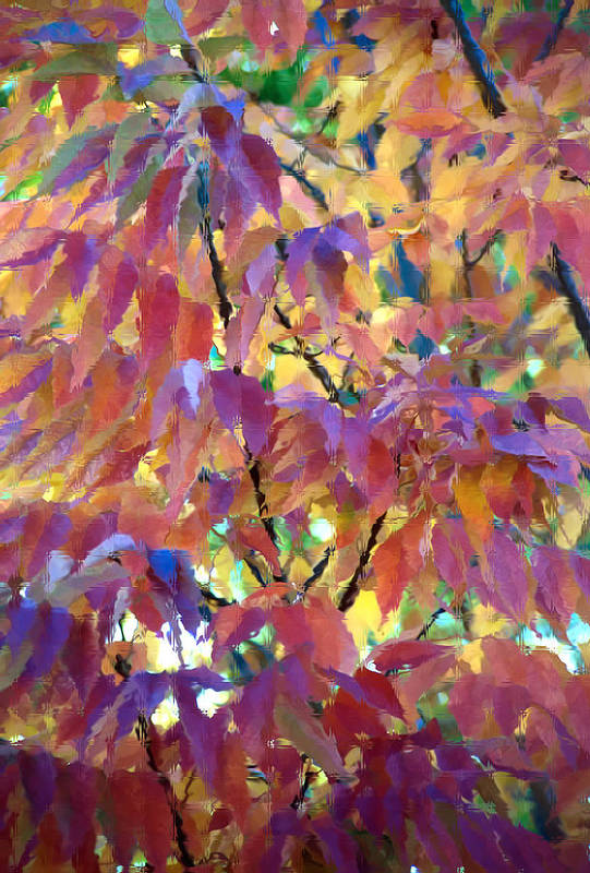 Ash Tree Art Print featuring the photograph Autumn Ash Tree 3 by Steve Ohlsen