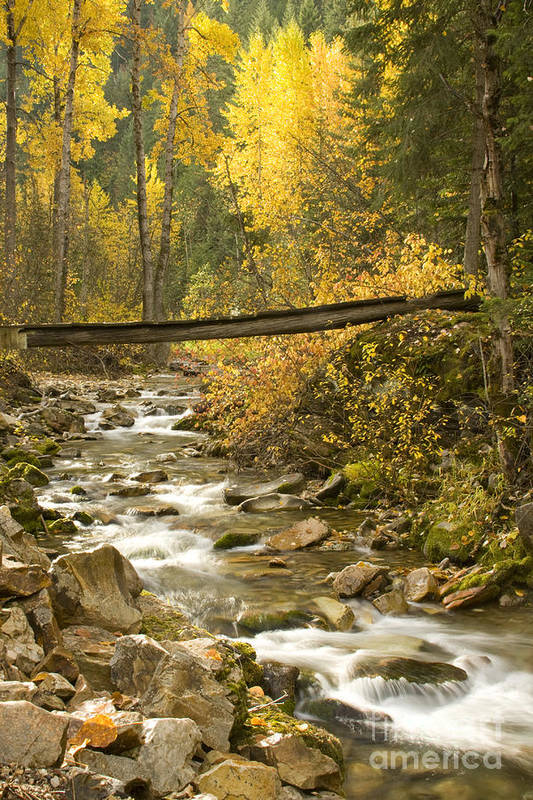 Cross Art Print featuring the photograph Autumn Crossing by Idaho Scenic Images Linda Lantzy