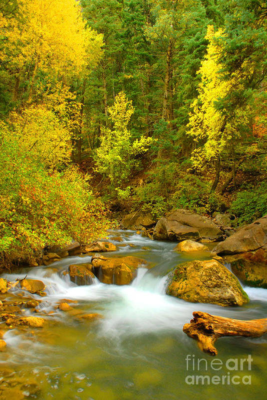 Utah Art Print featuring the photograph Autumn On Big Cottonwood River by Dennis Hammer