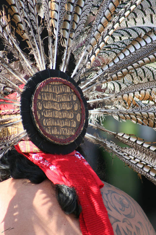 Swan Art Print featuring the photograph Aztec Danza 1 by LoungeMode Productions