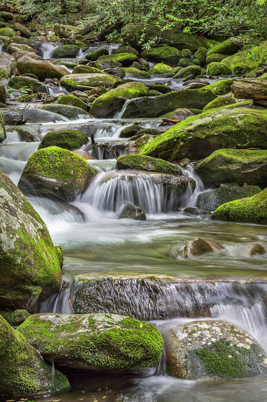 Vertical Art Print featuring the photograph Back Country Stream by Jon Glaser