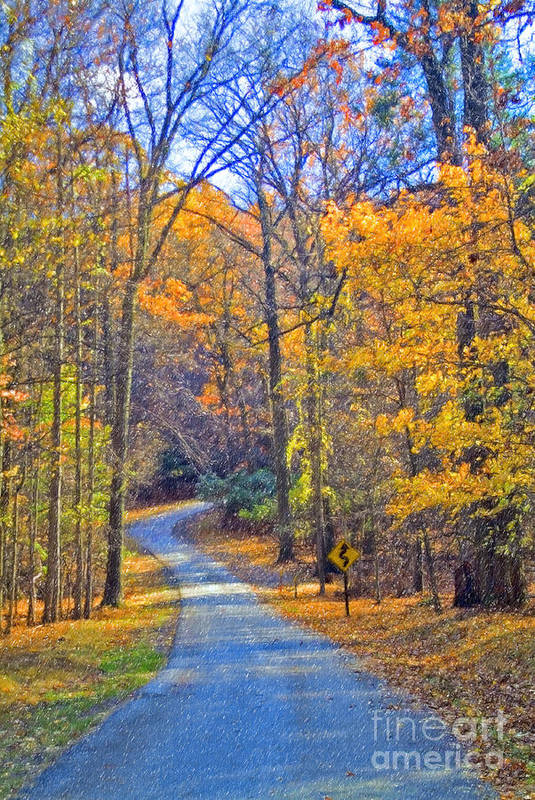 Back Road Fall Colors Foliage Revolutionary Civil War Road Valley Forge Pa Art Print featuring the photograph Back Road Fall Foliage by David Zanzinger