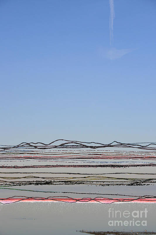 Bay Art Print featuring the photograph Bay Lines by Andy Mercer