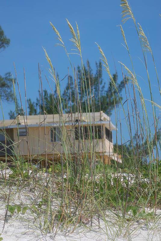 Landscape Art Print featuring the photograph Beach House Through Sea Oats by Lisa Gabrius