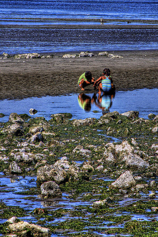 Discovery Park Art Print featuring the photograph Beach Play by David Patterson