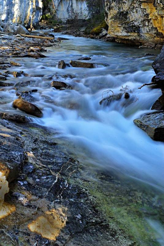 Beauty Creek Art Print featuring the photograph Beauty Creek by Larry Ricker