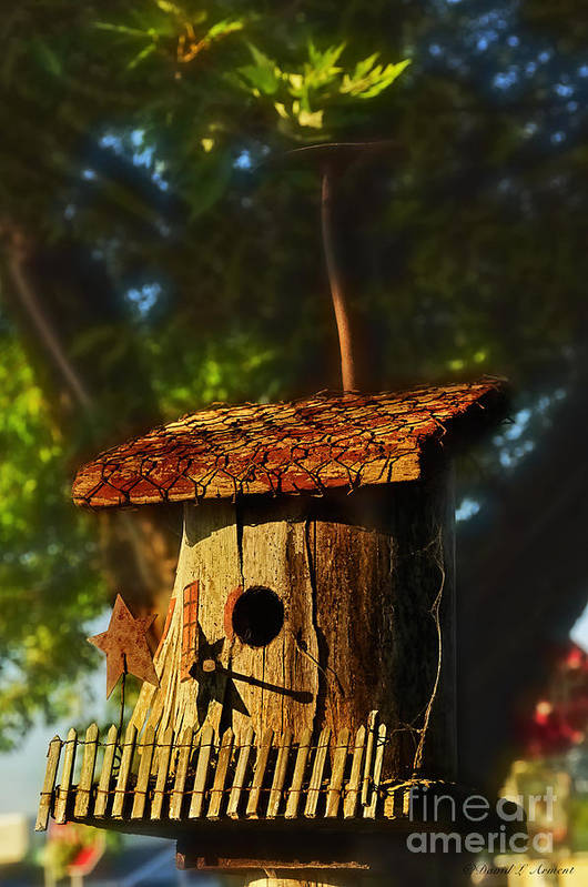 Birdhouse Art Print featuring the photograph Birdhouse by David Arment