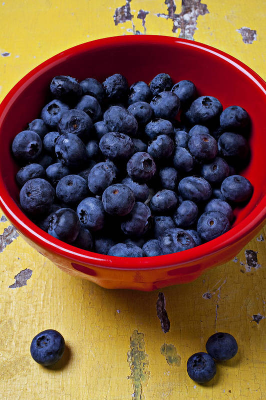 Blueberries Red Bowl Art Print featuring the photograph Blueberries In Red Bowl by Garry Gay