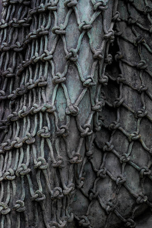 Bronze Art Print featuring the photograph Brnze Net by Juan Gnecco