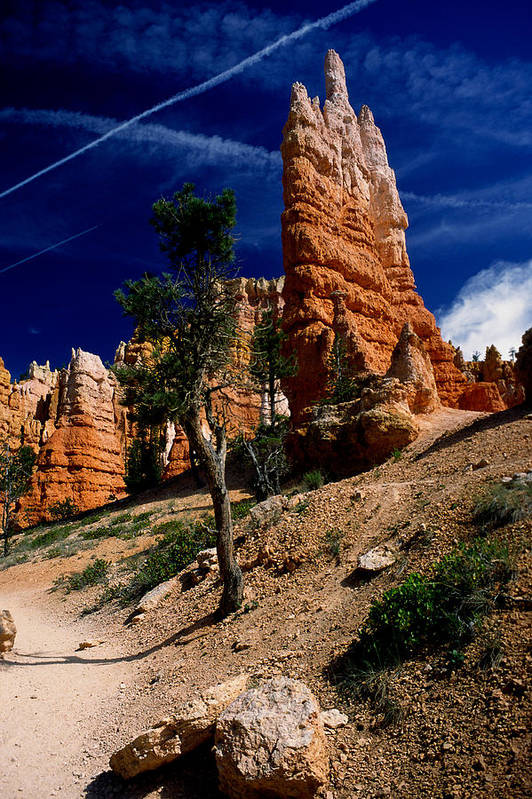 Bryce Canyon Art Print featuring the photograph Bryce Canyon 10 by Art Ferrier