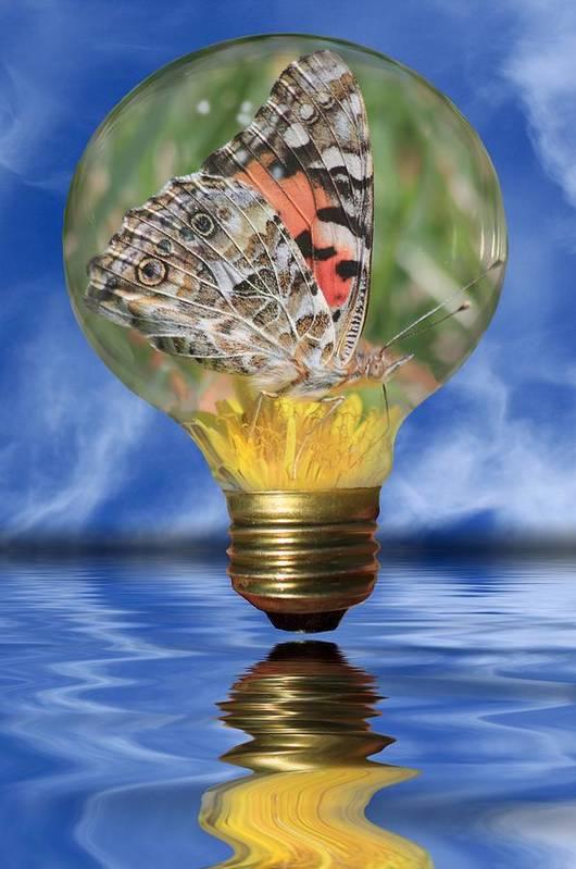 Lightbulb Art Print featuring the photograph Butterfly In Lightbulb by Shane Bechler