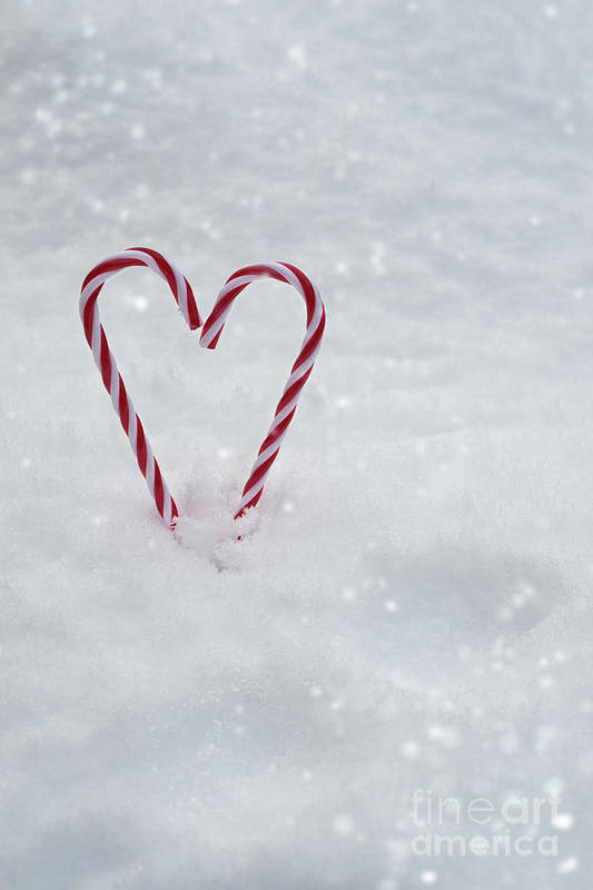Candy Art Print featuring the photograph Candy Canes In Snow by Amanda Elwell