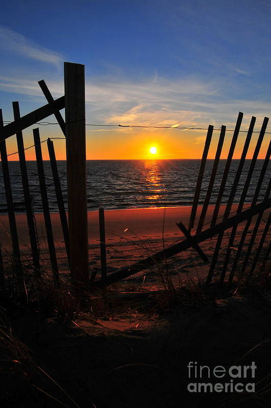 Sunset Art Print featuring the photograph Cape Cod Sunset by Catherine Reusch Daley