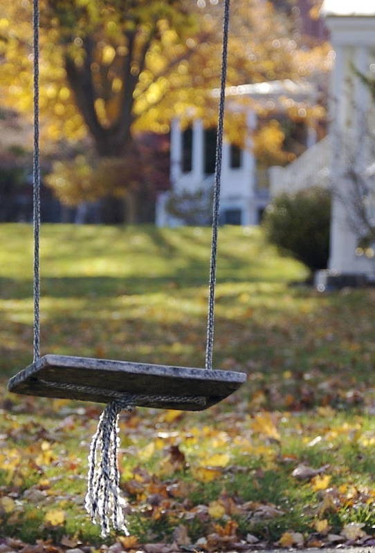 Swing Art Print featuring the photograph Carefree by Faith Harron Boudreau