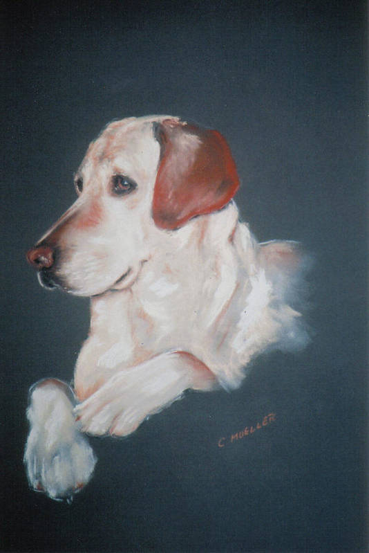 Dog Art Print featuring the painting Casey by Carol Mueller