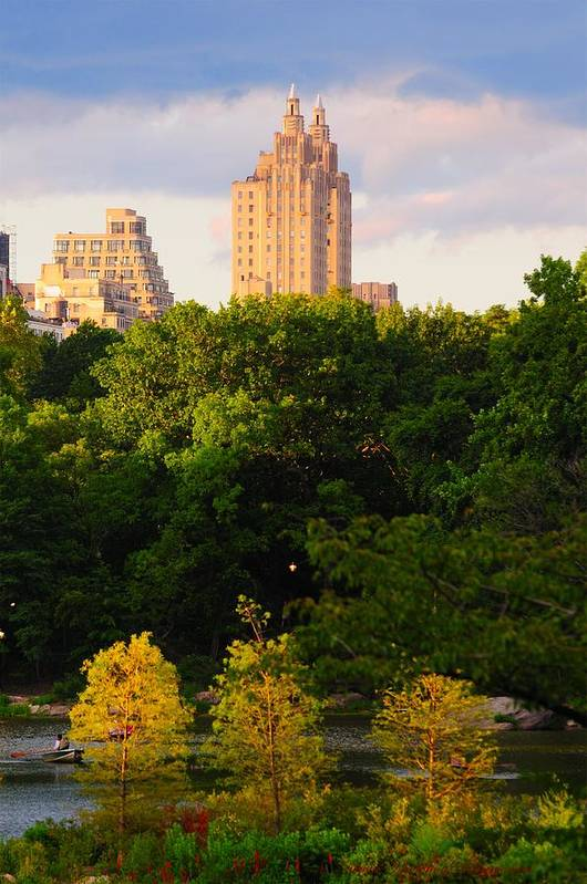 Central Park Art Print featuring the photograph Central Park 7503 by PhotohogDesigns