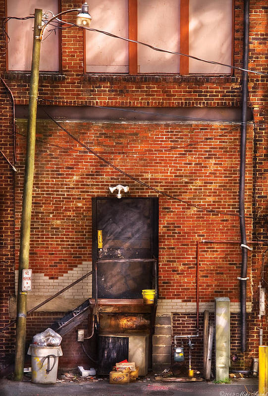 Savad Art Print featuring the photograph City - Door - The Back Door by Mike Savad