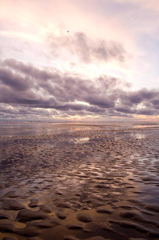Beach Art Print featuring the photograph Collective Sigh by Jennifer Owen