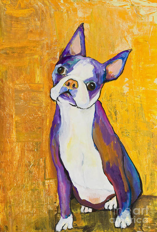 Boston Terrier Animals Acrylic Dog Portraits Pet Portraits Animal Portraits Pat Saunders-white Art Print featuring the painting Cosmo by Pat Saunders-White