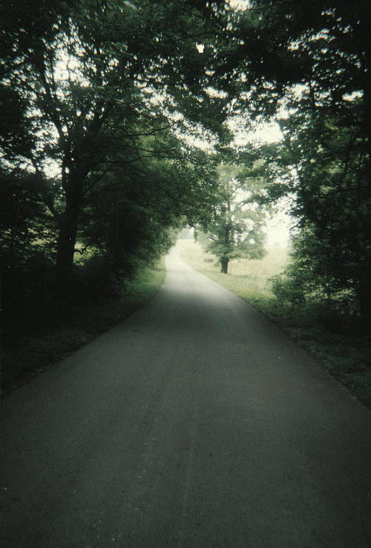 Country Art Print featuring the photograph Country Road by Utopia Concepts