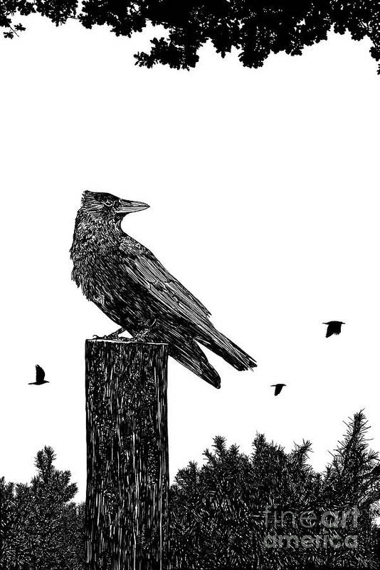 Digital Art Print featuring the digital art Crow On Fence Post by Clayton Bastiani