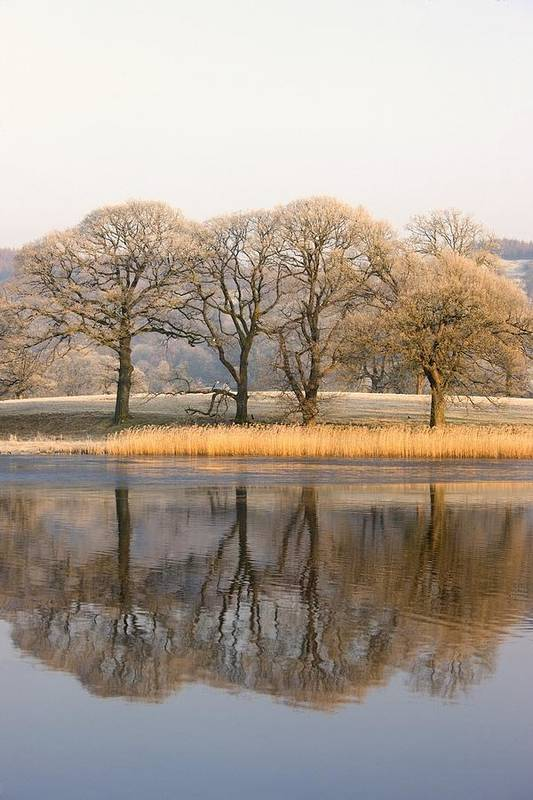 Autumn Art Print featuring the photograph Cumbria, England Lake Scenic With by John Short