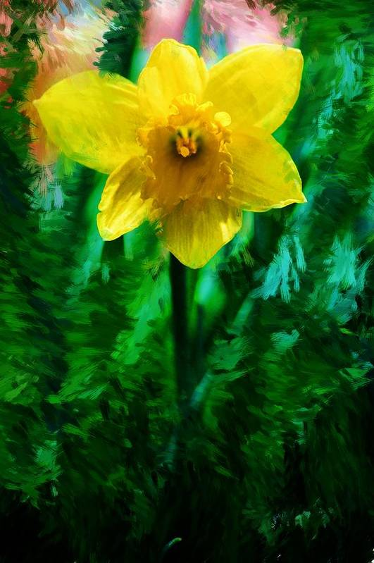 Abstract Art Print featuring the photograph Daffy Dill by David Lane
