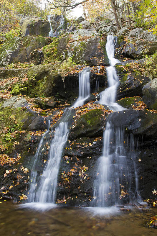 Shenandoah Art Print featuring the photograph Dark Hollow Falls Shenandoah National Park by Pierre Leclerc Photography