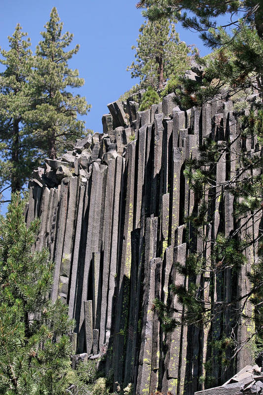 Devils Postpile Art Print featuring the photograph Devils Postpile National Monument - Mammoth Lakes - East California by Christine Till