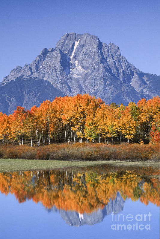 Grand Tetons Art Print featuring the photograph Fall Reflection At Oxbow Bend by Sandra Bronstein