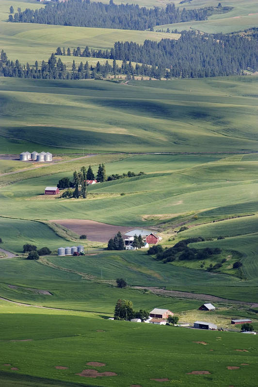Fertile Art Print featuring the photograph Farmland In Eastern Washington State by Carl Purcell