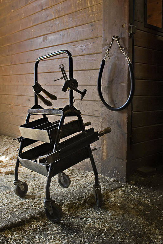 Horse Art Print featuring the photograph Farriers Tools by Jack Goldberg