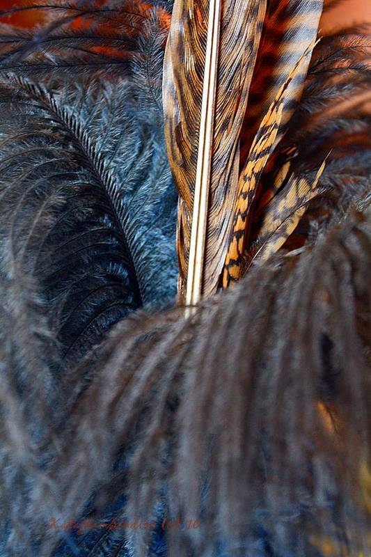 Feathers Art Print featuring the photograph Feather Fun by KatagramStudios Photography