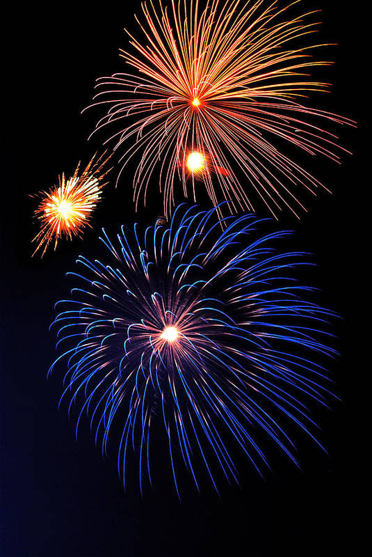 Fireworks Art Print featuring the photograph Fireworks Wixom 1 by Michael Peychich