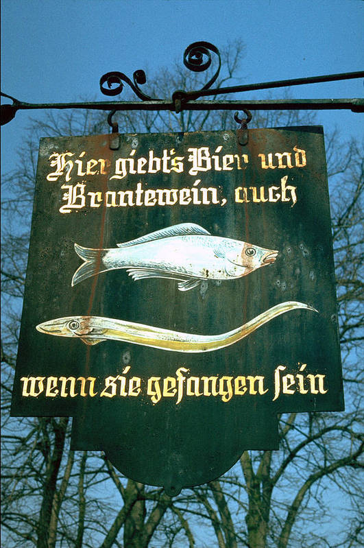 Store Sign Art Print featuring the photograph Fish by Flavia Westerwelle