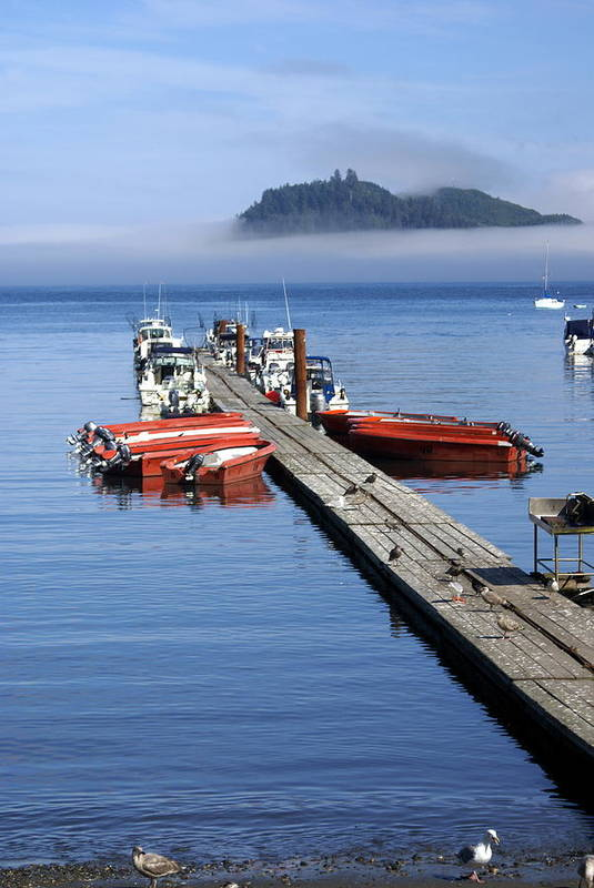 Olympic Art Print featuring the photograph Foggy Dock by Marty Koch