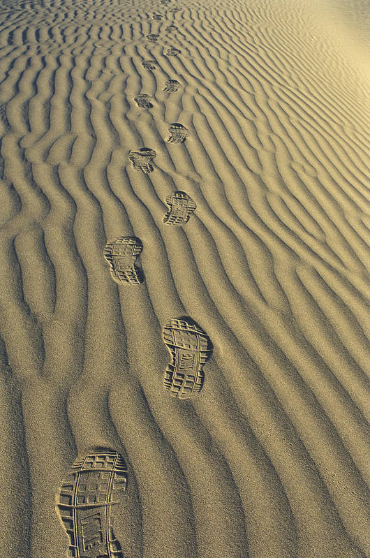 Footprints Art Print featuring the photograph Footprints In The Sand by Joe Palermo