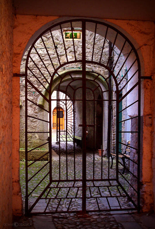 Gate Art Print featuring the photograph Gated Passage by Tim Nyberg