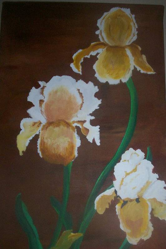 Iris Art Print featuring the painting Golden Iris by Mary Hollis