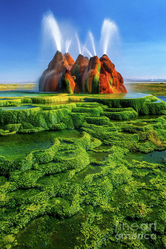 America Art Print featuring the photograph Green Fly Geyser by Inge Johnsson