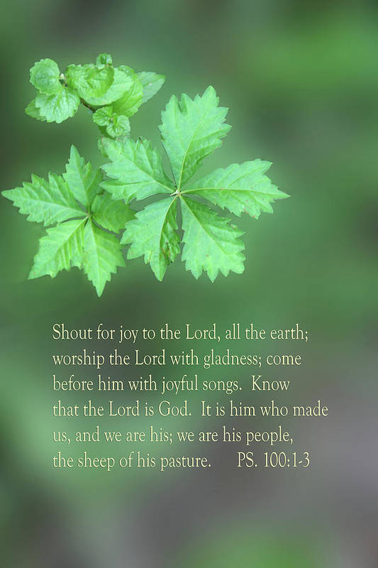 Scripture Art Print featuring the photograph Green Leaves Ps.100 V 1-3 by Linda Phelps