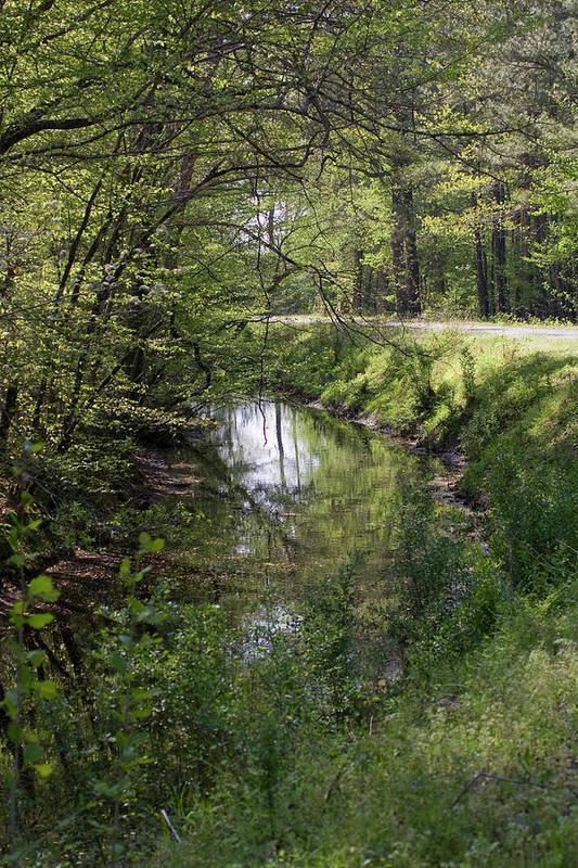 Creek Art Print featuring the photograph Greenway by Alan Raasch